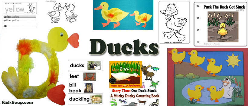 Ducks activities and crafts for preschool and kindergarten