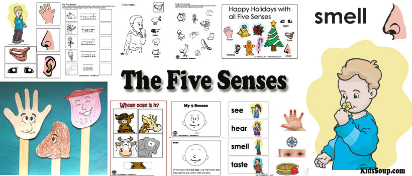 Five Senses preschool and kindergarten activities, lessons, and crafts