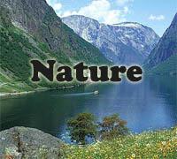 Nature themes preschool and kindergarten